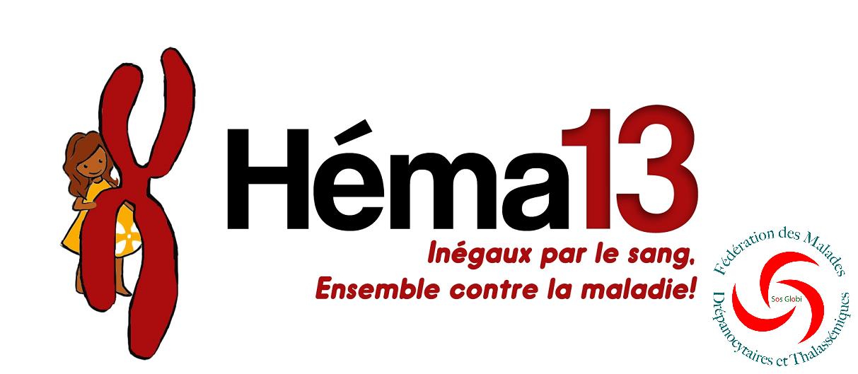 Hema 13 Logo